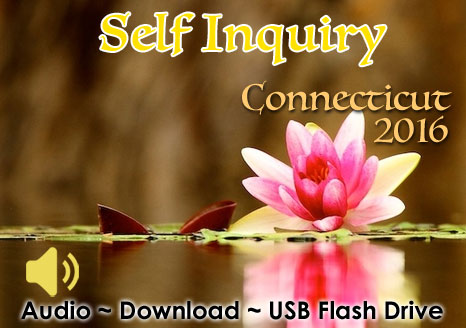 Self Inquiry Wilton, Connecticut 2016 - MP3 AUDIO