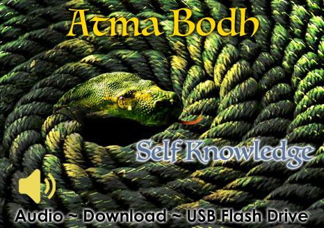 Atma Bodha ~ 2013 ~ Audio