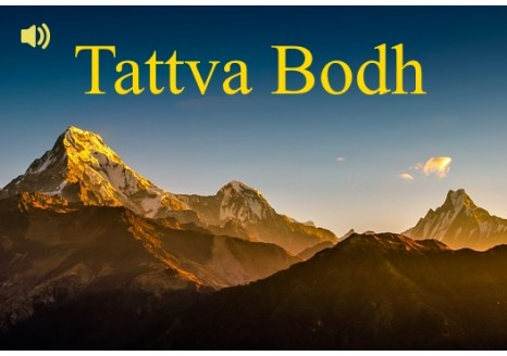 Tattva Bodh bundle ~ Amsterdam 2014 & Belgium 2016 ~ Audio