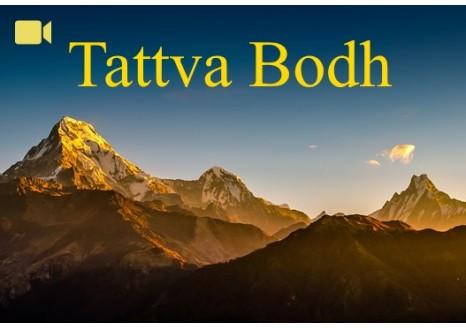 Tattva Bodh bundle ~ Amsterdam 2014 & Belgium 2016 ~ Video