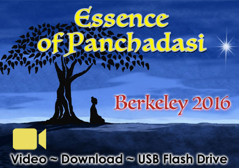Essence of Panchadasi Berkeley 2016 - VIDEO