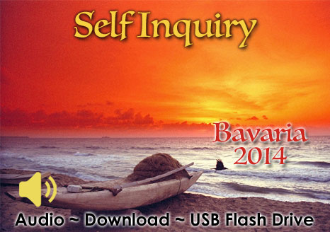Self Inquiry Bavaria 2014 - MP3 AUDIO