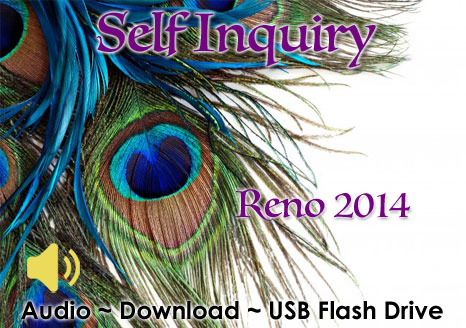 Self Inquiry Reno 2014 - MP3 AUDIO