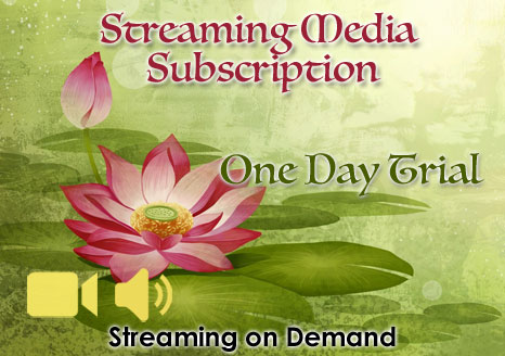 One Day Trial Subscription