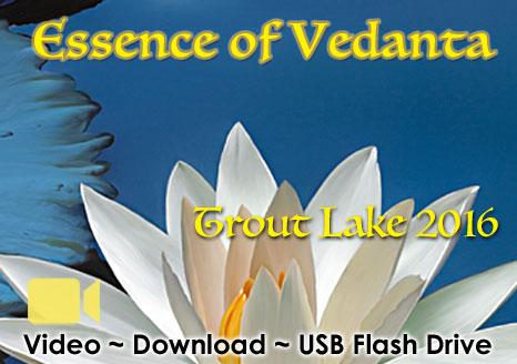 Essence of Vedanta ~ Trout Lake 2016 ~ VIDEO